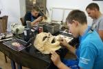 Schnitzkurs 23.-27.07.2012